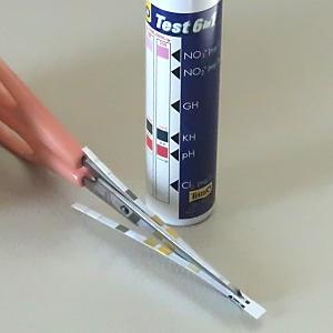 Tetra TEST 6in1 テトラ テスト