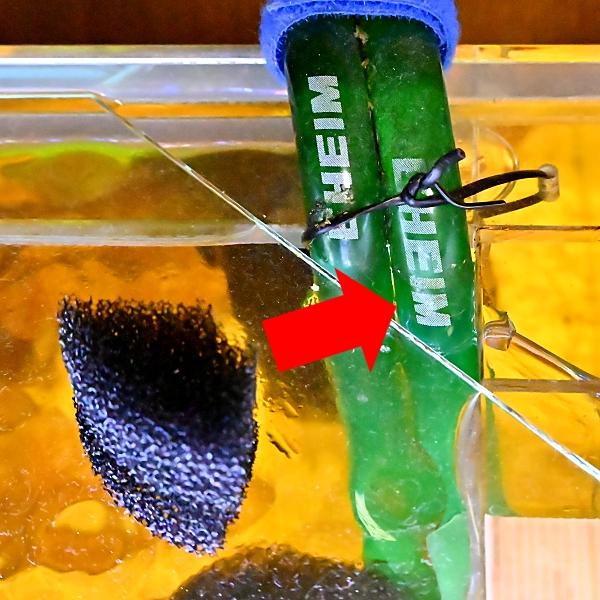 魚 エビ 飛び出し 防止 スポンジ